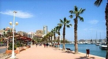 inmobiliarias en alicante capital